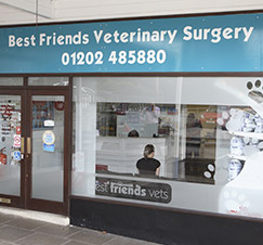 Best Friends Vets
