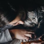 Apps to shape up your cat's abs
