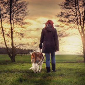 New lockdown rules say you can walk your dog more than once a day